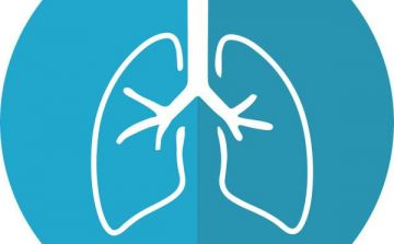 lungs-2803208_1280_002.jpg